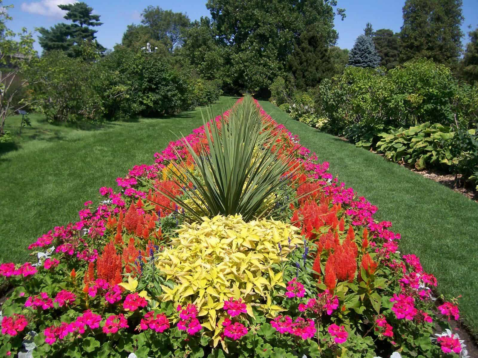 Where Can I Find an AAS Display Garden - All-America ...
