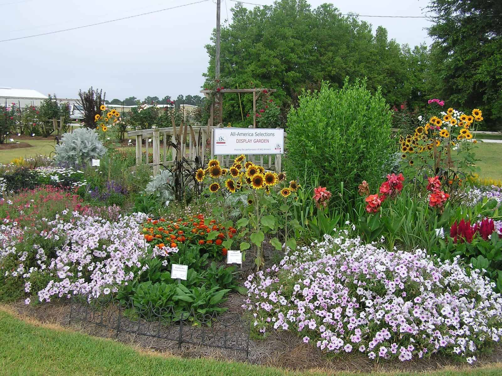 Where Can I Find An AAS Display Garden