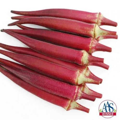 Candle Fire Okra - A unique red okra with pods that are round, not ribbed, and a brighter red color than the reddish burgundy okras currently available.