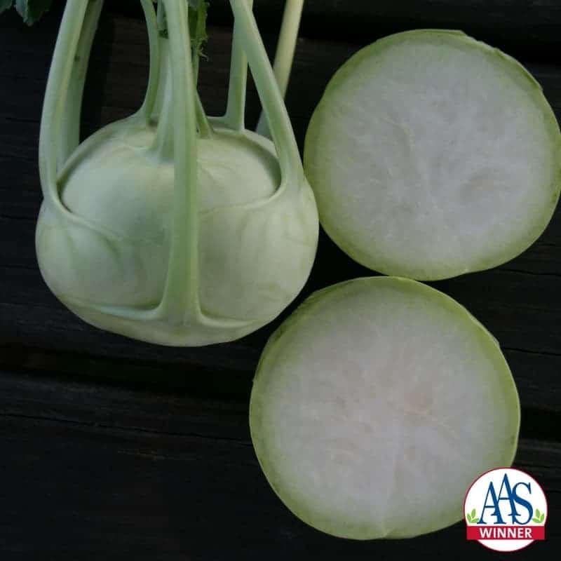 Kohlrabi Konan - 2016 AAS Edible-Vegetable Winner