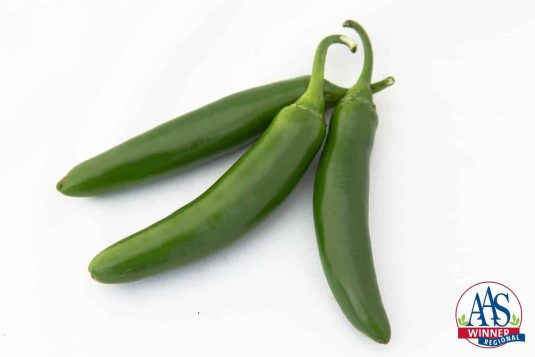 Pepper Flaming Jade F1 2016 AAS Vegetable Award Winner When you need Serrano peppers to help bring the heat to your recipes, look no further than Pepper Flaming Jade F1, our Regional Winner for the Heartland and Great Lakes areas.