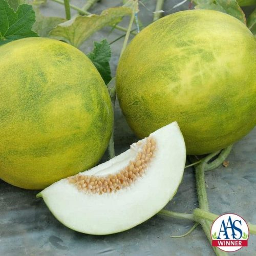 Melon Melemon F1 2013 AAS Vegetable Award Winner The earliness, high yield on healthy, strong plants and superior taste all contributed to this melon becoming an AAS Winner.