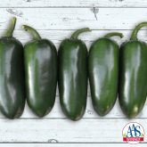 Pepper Emerald Fire - Emerald Fire produces gorgeous, glossy green peppers with thick walls that have very little cracking, even after maturing to red.