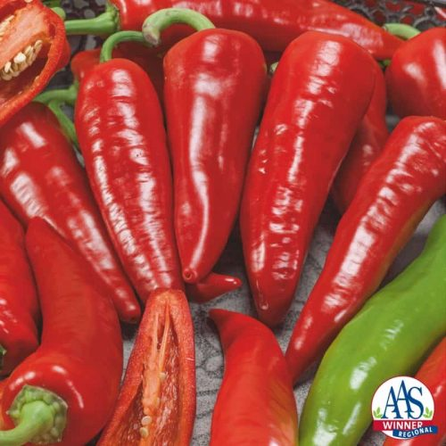 Pepper Giant Ristra F1 2014 AAS Vegetable Award Winner Heavy yield of bright red very hot 7-inch chile peppers.