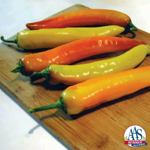 Pepper Hot Sunset F1 - 2015 AAS Vegetable Award Winner - For banana or wax pepper lovers who desire a prolific and earlier harvest of delicious and spicy (650 Scoville units) fruits, Hot Sunset is for you.