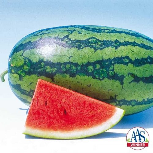 Watermelon Sweet Beauty- 2004 AAS Edible - Vegetable Winner - Nothing says summer like watermelon, and everybody wants a sweet slice. Sweet Beauty offers consistently sweet flavor and crisp texture.