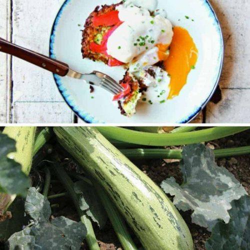 zucchini-latkes-eggs