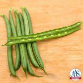 Bean Pole Seychelles - 2017 AAS Edible-Vegetable Winner
