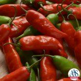Pepper Aji Rico - 2017 AAS National Winner
