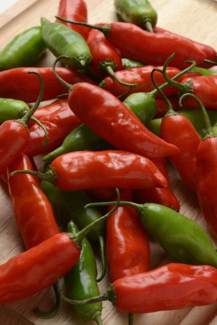 Aji Rico Pepper F1 - 2017 AAS Edible-Vegetable National Winner