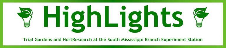 Highlights Top Banner