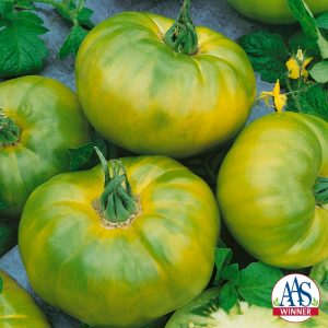 Chef's Choice Green Tomato - The newest addition to the Chef's Choice series produces beautiful green colored fruits with subtle yellow stripes and a wonderful citrus-like flavor and perfect tomato texture.