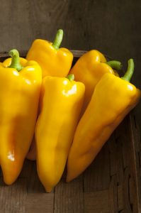 A wonderful sweet taste on a golden yellow pepper makes Pepper Escamillo F1, one of our 2016 AAS Winners.