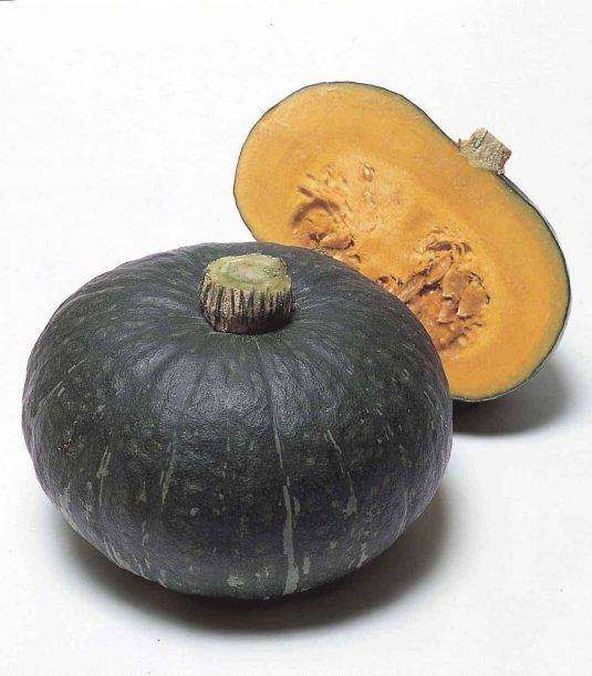Squash Sweet Mama - AAS Edible - Vegetable Winner