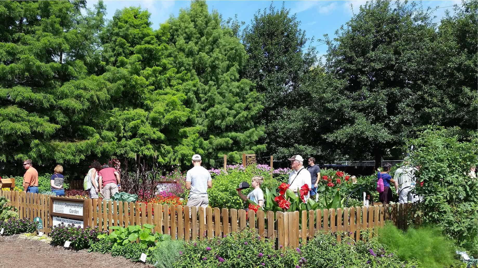Marion County Master Gardeners Indiana Garden Ftempo