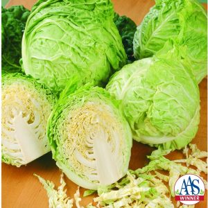 Cabbage Savoy Express F1 -2000 AAS Edible - Vegetable Winner This is the earliest savoy (crinkled or waffle-like) cabbage with a sweet, non-bitter flavor perfect for slaw or other cabbage salads.