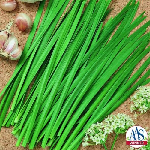 Chives Garlic Geisha Slightly wider, flatter and more refined leaves topped by pretty white flower stalks late in the season mean this is another edible that can serve a dual purpose as an ornamental.
