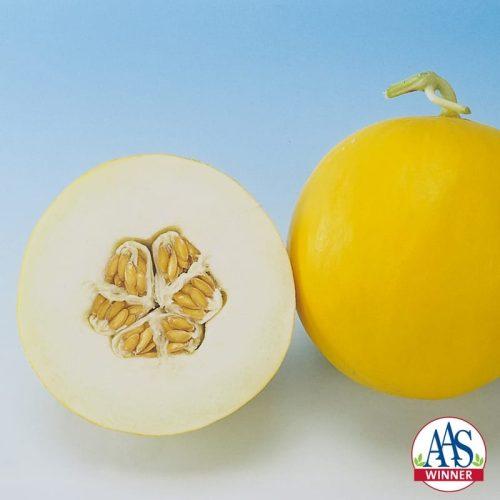 Melon Amy- 2004 AAS Edible - Vegetable Winner