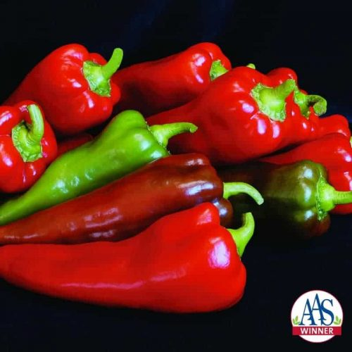 Pepper Carmen F1 - 2006 AAS Edible - Vegetable Winner 'Carmen' is an improved sweet pepper with an unusual shape.
