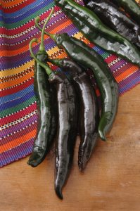 Pepper Holy Molé hybrid - 2007 AAS Vegetable Award Winner 'Holy Molé' is a memorable name and the plant will provide a memorable harvest of peppers.