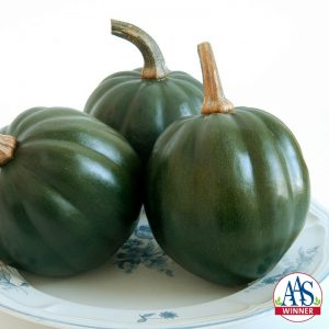 Squash Honey Bear F1 2009 AAS Vegetable Award Winner The sweet flavor of 'Honey Bear' is the main reason any gardener would want to grow this acorn squash but there are many more exceptional qualities.