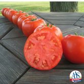 Tomato Mountain Merit F1 2014 AAS Vegetable Award Winner Mountain Merit was judged by growers in the Heartland region as a superior tomato because it is such a nice all-around tomato, perfect for slicing and sandwiches.