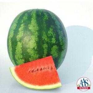 Watermelon Shiny Boy F1 - 2010 AAS Vegetable Award Winner This AAS Winner has sweet tropical flavor and crisp texture.