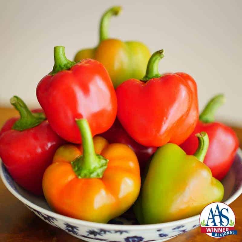 Pepper Sweetie Pie F1 - 2017 AAS Edible-Vegetable Winner