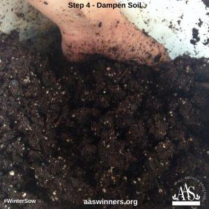Winter Sow Dampen Soil
