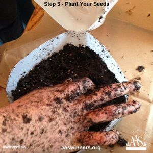 Winter Sow Plant Seeds