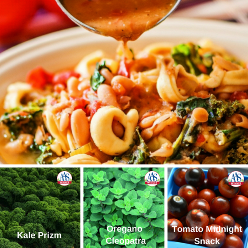 Pasta E Fagioli with Tortellini and Kale - Meatless Monday Recipes with AAS Winners