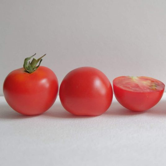 Tomato, cocktail Red Racer F1 - 2018 AAS Edible - Vegetable Winner