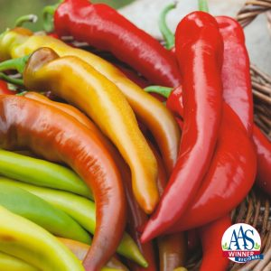 Pepper Hungarian Mexican Sunset - 2018 AAS Edible - Vegetable Winner