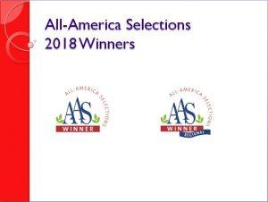 2018 AAS Winners