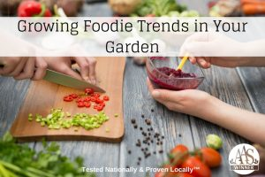 Grow Foodie Trends in Your Garden with AAS Winners - Grow All-America Winners and know that your garden will grow! #garden #vegetablegardening #foodtrends