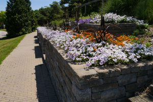 Humber Arboretum, Toronto Canada - AAS Display Garden