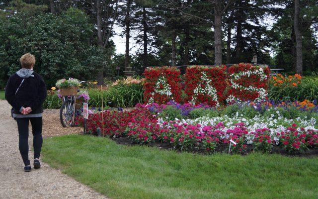 "Honorable Mention, ""Creative Use of AAS Winners"": Morris Horticulture Display Garden, Morris, Minnesota - 2018 AAS Display Challenge"