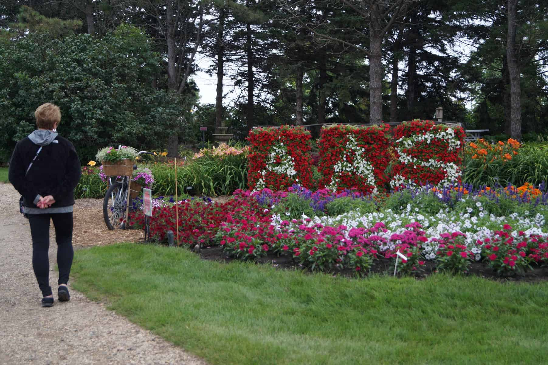 "Honorable Mention, ""Creative Use of AAS Winners"": Morris Horticulture Display Garden, Morris, Minnesota - 2018 AAS Display Challenge"