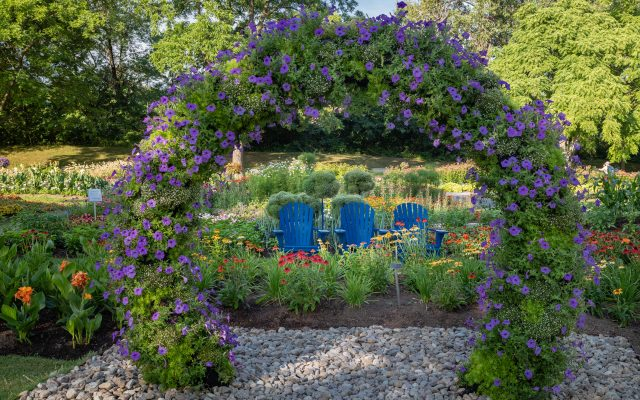 Second Place Winner: Norseco at Montreal Botanical Garden, Montreal, Quebec, Canada - 2018 AAS Display Garden Challenge