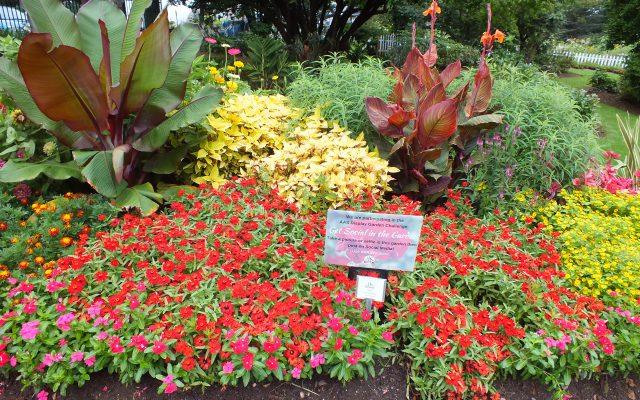 Third Place Winner: Clark Botanic Garden, Albertson, New York - 2018 AAS Display Garden Challenge
