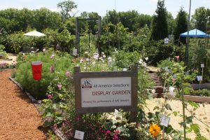 Third Place Winner: Master Gardener Association of Tippecanoe County (MGATC) Display Gardens, Lafayette, Indiana - 2018 AAS Display Garden Challenge