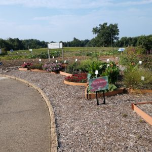 """Honorable Mention, """"Use of Amazon Reviews"""": Southwest Indiana Master Gardener Demonstration Gardens, Evansville, Indiana"""