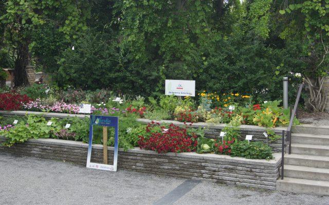 Second Place Winner: Jardin Daniel A Seguin, Saint-Hyacinthe, Quebec, Canada - 2018 AAS Design Challenge Winner