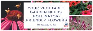 Your Vegetable Garden Needs Pollinator-Friendly Flowers