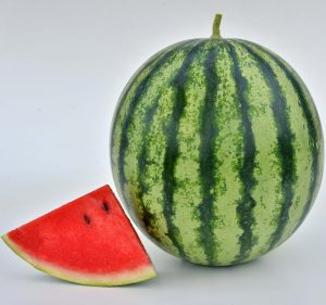 Watermelon Mambo - 2020 AAS Edible - Vegetable Winner