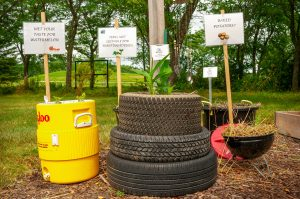 Second Place Winner: Kenosha County Center AAS Display & Demonstration Garden, Kenosha, Wisconsin - All-America Selections 2019 Display Garden Challenge