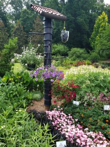 Third Place Winner: State Botanical Garden, Athens, Georgia - All-America Selections 2019 Display Garden Challenge