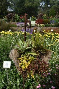 First Place Winner: Boerner Botanical Gardens, Milwaukee, Wisconsin - All-America Selections 2019 Display Garden Challenge