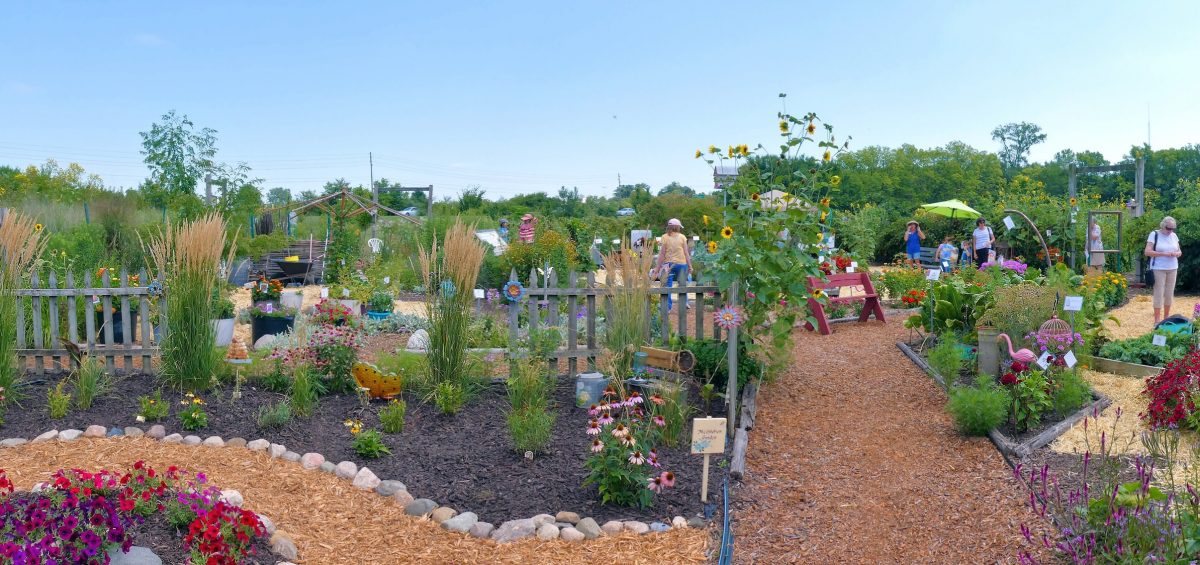 First Place Winner: Master Gardener Association of Tippecanoe County (MGATC) Display Gardens, Lafayette, Indiana - All-America Selections 2019 Display Garden Challenge