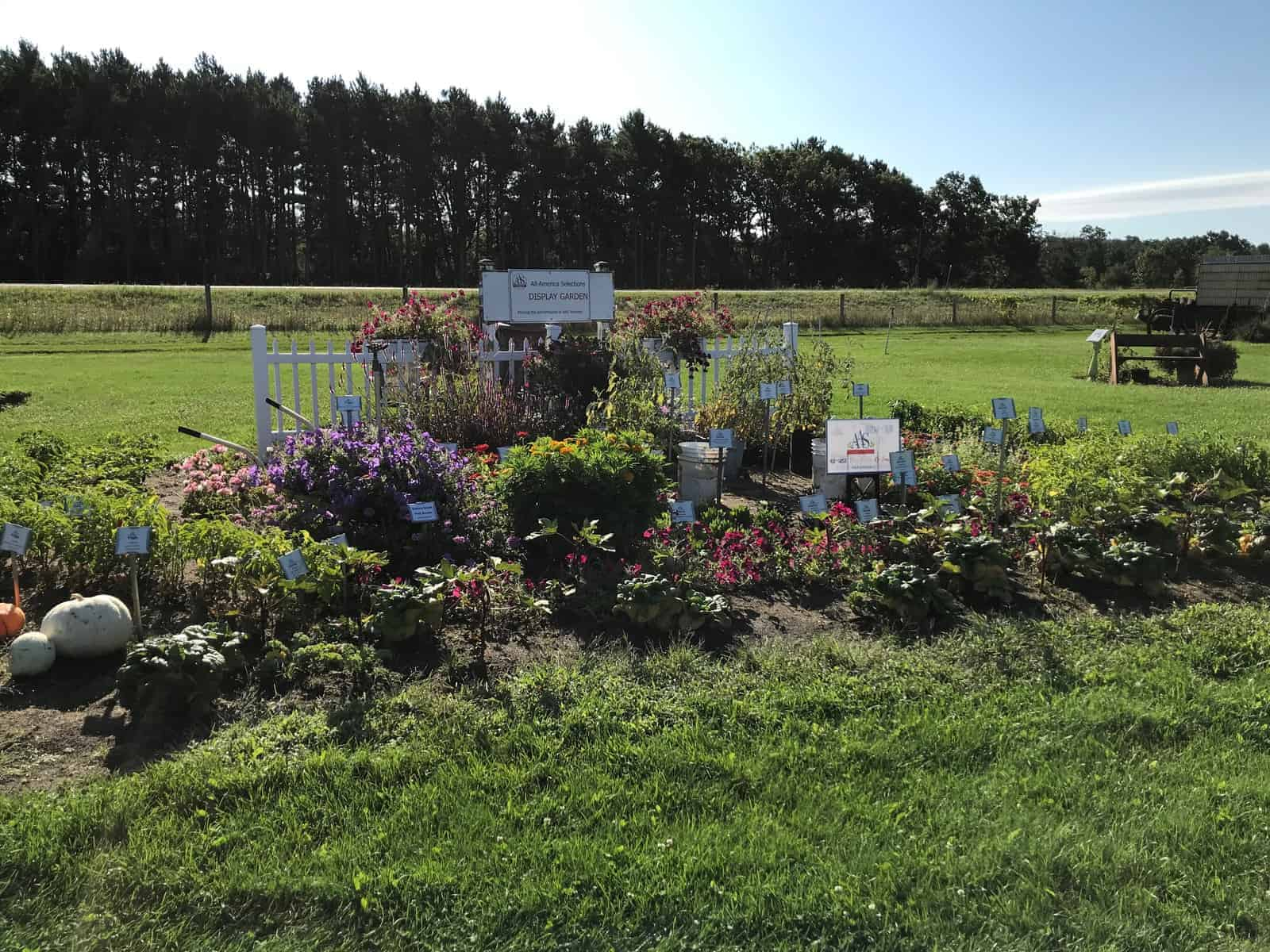 "Honorable Mention: ""Excellent Use of AAS Edible Winners"": Hancock Ag Research Station, Hancock, Wisconsin - All-America Selections 2019 Display Garden Challenge"